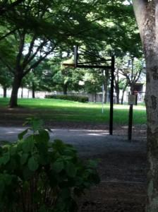 和田堀公園バスケットゴール