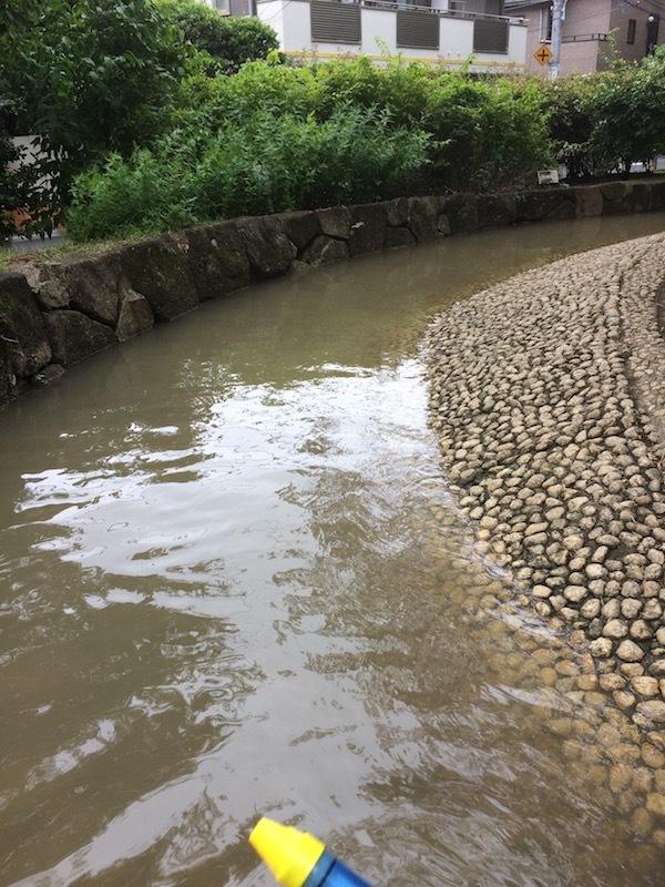 梅里中央公園のじゃぶじゃぶ池