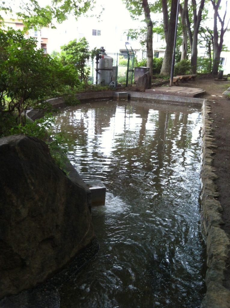 和田堀公園(松ノ木中学校横)