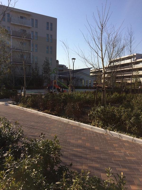 杉並税務署前の公園