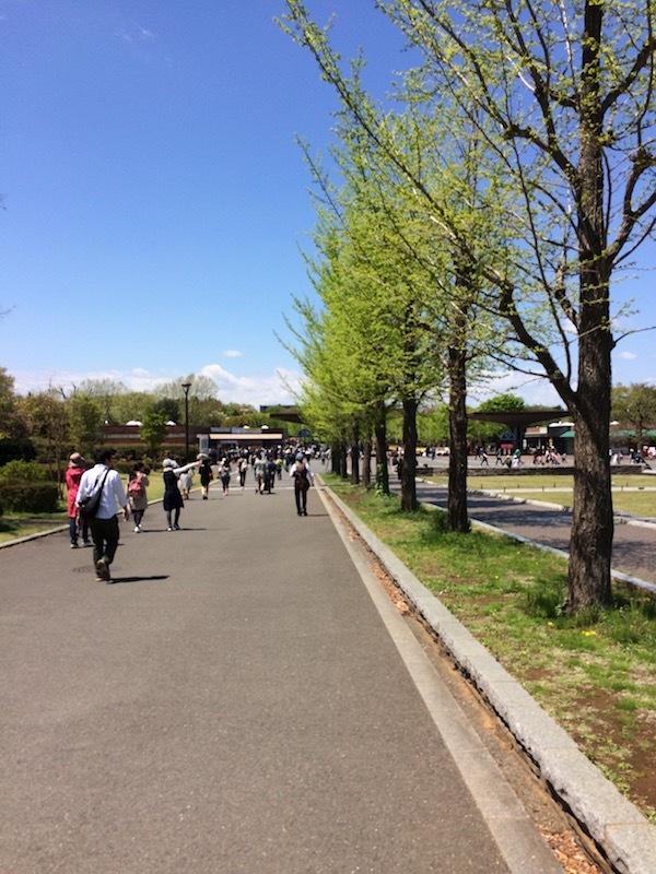 立川駅から昭和記念公園の遊具にたどり着くまでに30分以上はかかる