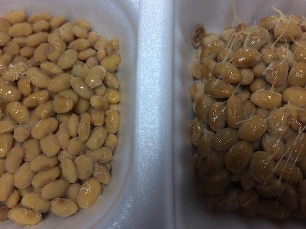 やわらか超極小粒と通常のおかめ納豆極小粒の味の違い