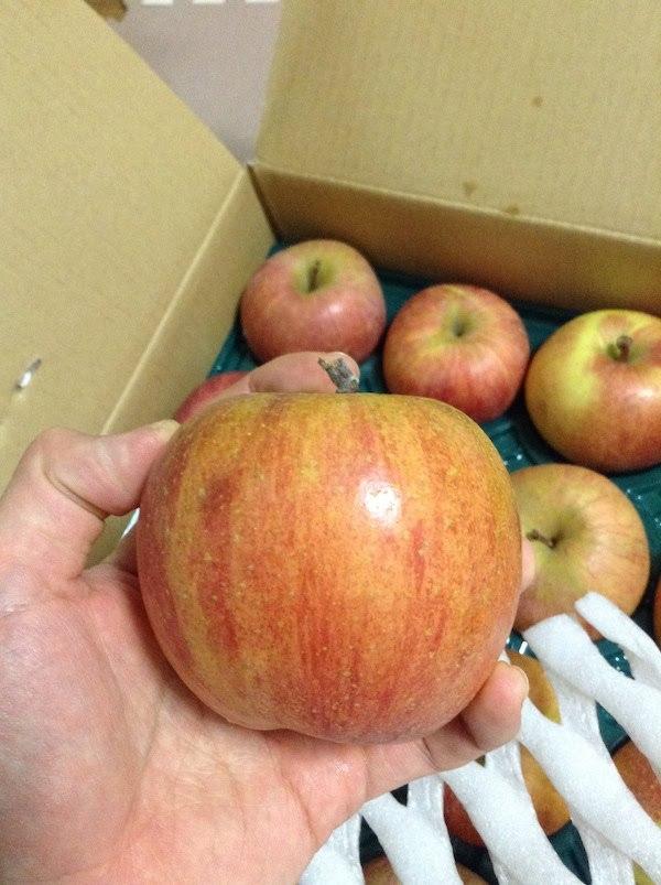 ふるさと納税で1万円の寄付金で20kgのリンゴはお得でおすすめ
