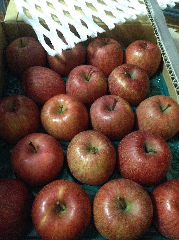ふるさと納税で3月のりんご10kgの返礼品は大阪府泉佐野市がおすすめ