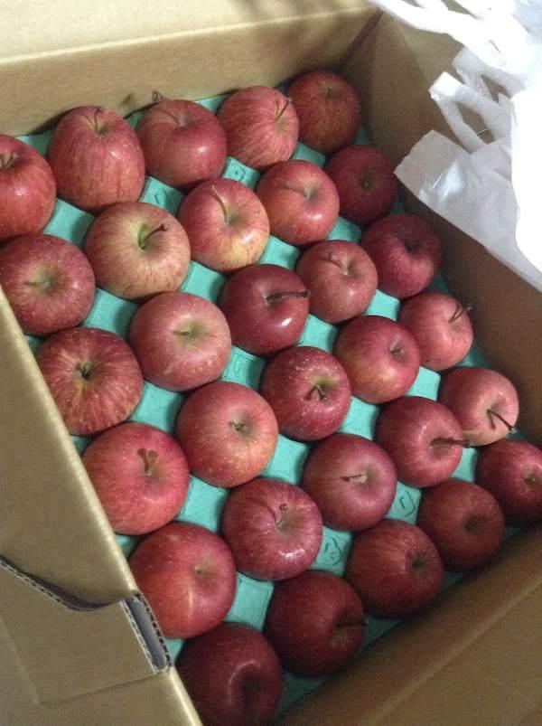Apple&StrawberryCampanyの通販りんごは美味しいし良対応でおすすめ