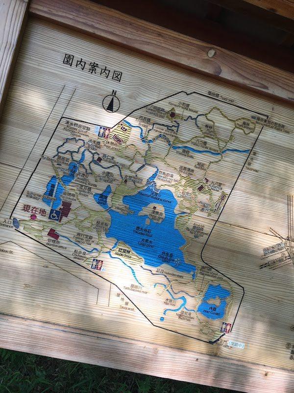 小石川後楽園の田んぼは子連れで虫・ザリガニ等の生物観察におすすめ