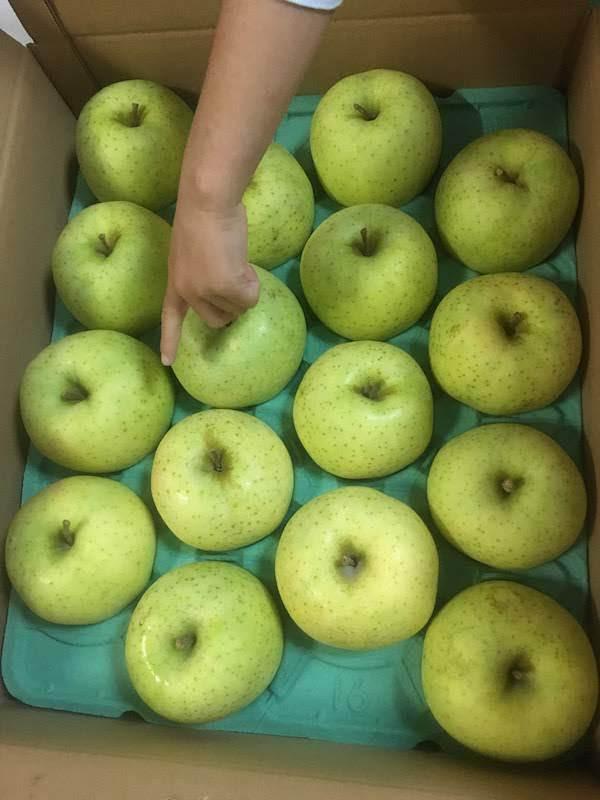 山形県長井市(ふるさと納税)のりんごは美味しいし高コスパでおすすめ