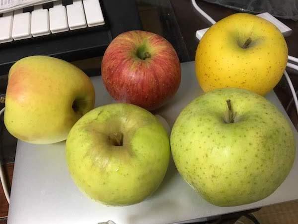 名月と他のりんごとの比較