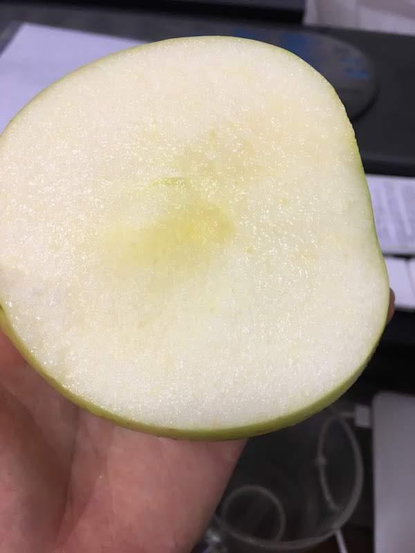 名月という品種のりんごの味・食感等の感想。どこで買えるか