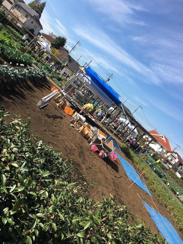 成田西ふれあい農業公園(東京都杉並区)の収穫体験イベントはおすすめ