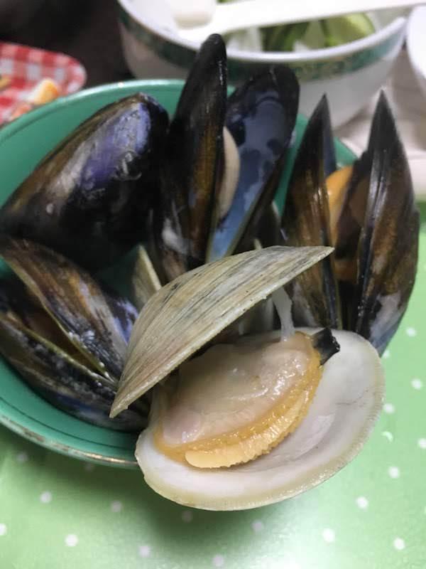 ホンビノス貝は安いし美味しい二枚貝で味噌汁や酒蒸しにおすすめ