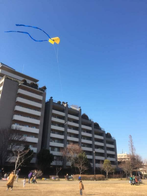 桃井はらっぱ手作り凧あげ大会(東京都杉並区)は子連れ家族におすすめ