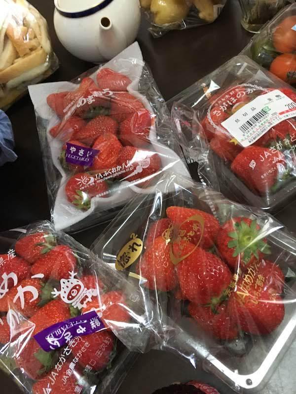 東京都内で食べ放題のいちご狩りにおすすめスポットは阿佐ヶ谷商店街