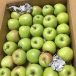 青森期待の新人商店の通販りんごは美味しいし低価格でおすすめである