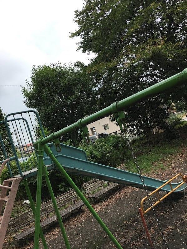 高根沢町・烏山市は夏休みの子どもと一緒の虫取りに最適である